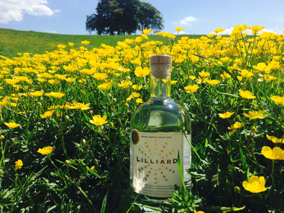 Lilliard Gin in a field