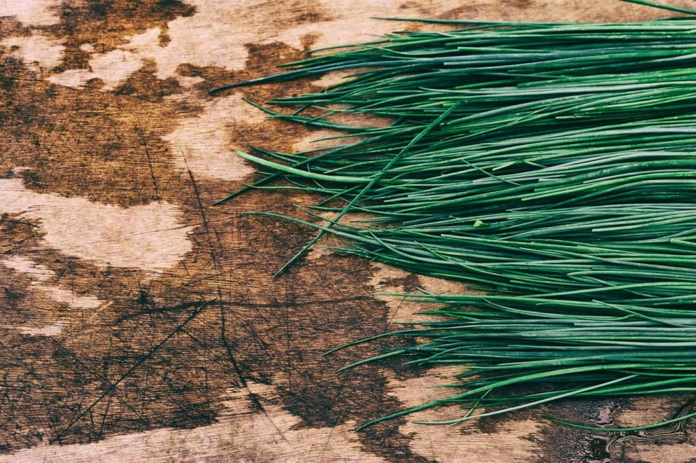 Chives are usually eaten raw and are often used in salads.