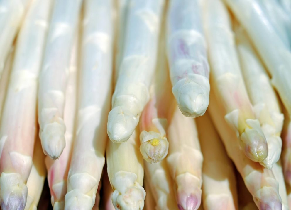 White asparagus bunch
