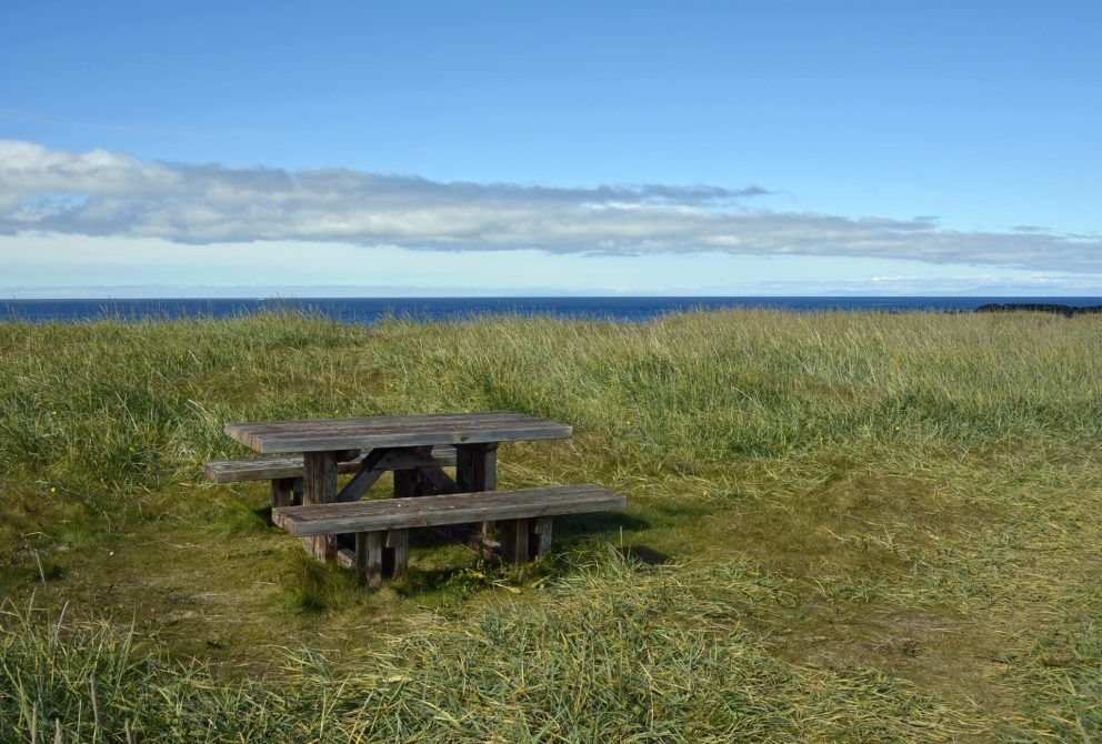 bench with sea and cliff view